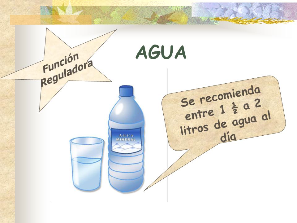 AGUA Se recomienda entre 1 ½ a 2 litros de agua al día Función Reguladora