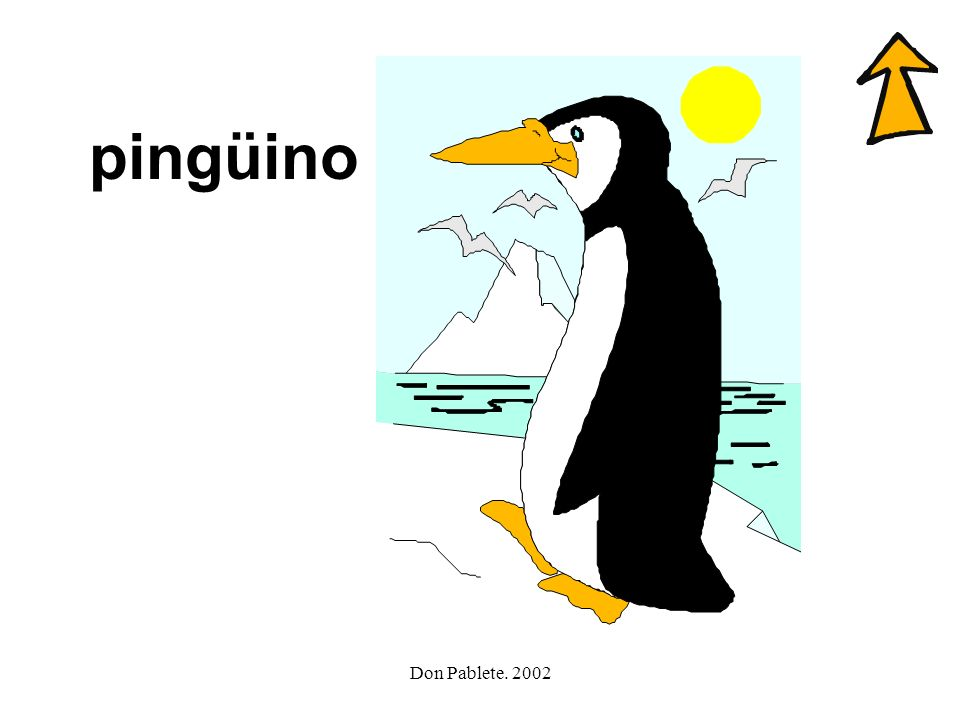 Don Pablete. 2002 gato pingüino gorila guitarra gacela