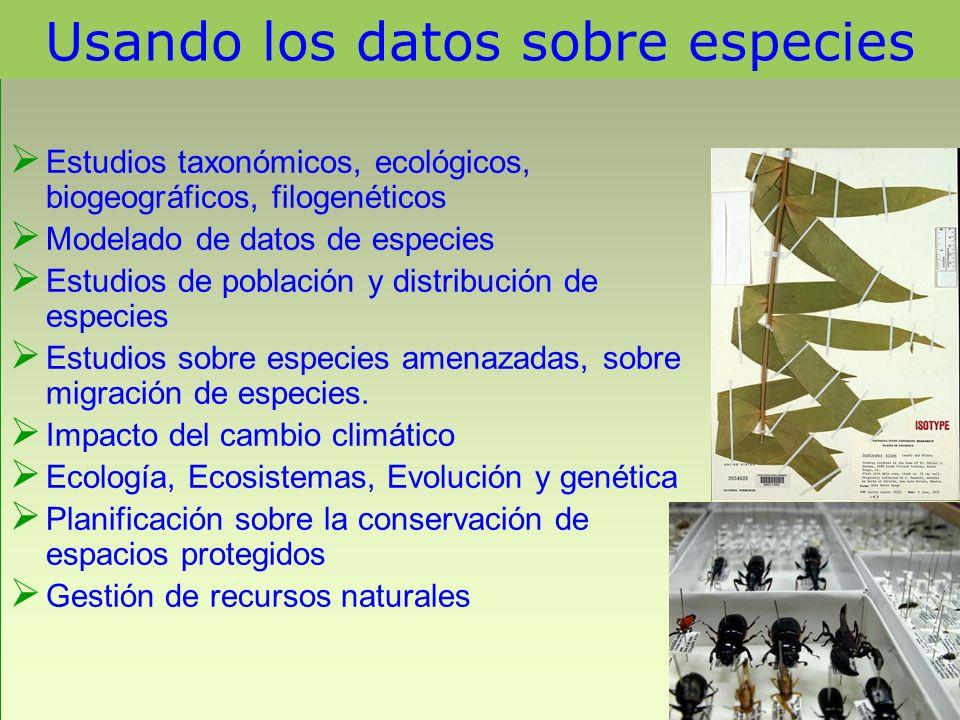 Usando los datos sobre especies Estudios taxonómicos, ecológicos, biogeográficos, filogenéticos Modelado de datos de especies Estudios de población y
