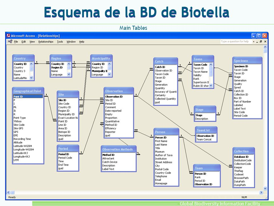 Global Biodiversity Information Facility Esquema de la BD de Biotella Main Tables