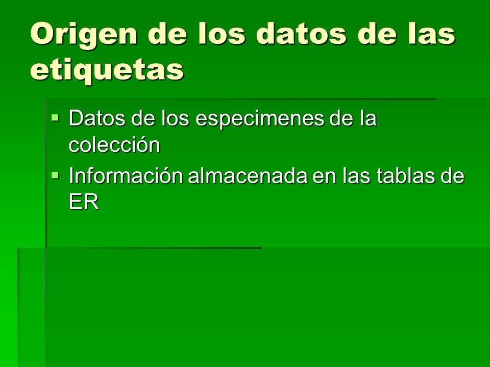 Origen de los datos de las etiquetas Datos de los especimenes de la colección Datos de los especimenes de la colección Información almacenada en las tablas de ER Información almacenada en las tablas de ER