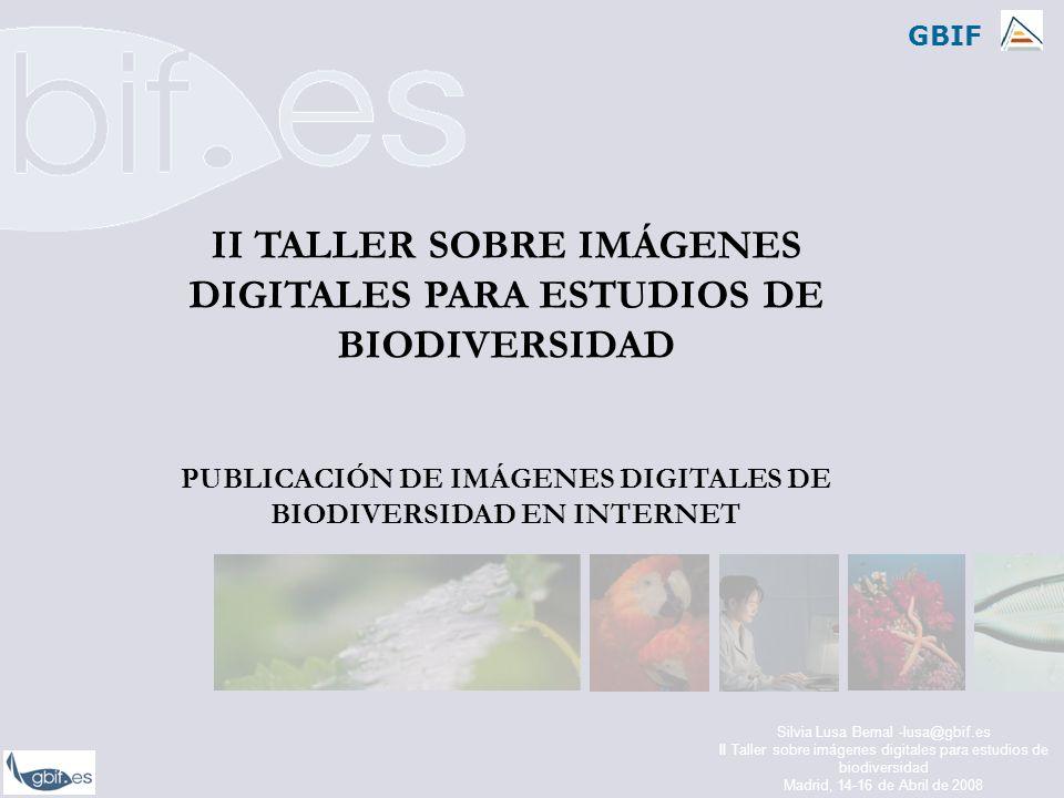 GBIF Silvia Lusa Bernal -lusa@gbif.es II Taller sobre imágenes digitales para estudios de biodiversidad Madrid, 14-16 de Abril de 2008 II TALLER SOBRE IMÁGENES DIGITALES PARA ESTUDIOS DE BIODIVERSIDAD PUBLICACIÓN DE IMÁGENES DIGITALES DE BIODIVERSIDAD EN INTERNET