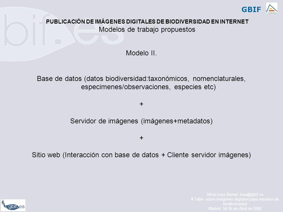 GBIF Silvia Lusa Bernal -lusa@gbif.es II Taller sobre imágenes digitales para estudios de biodiversidad Madrid, 14-16 de Abril de 2008 Modelo II.