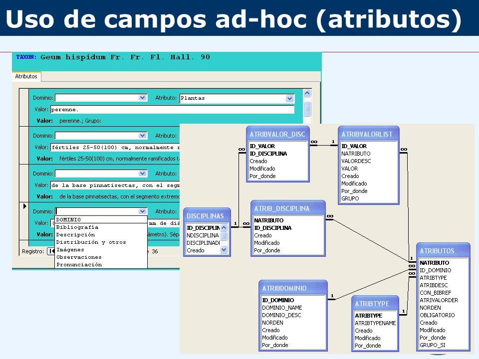 Uso de campos ad-hoc (atributos)