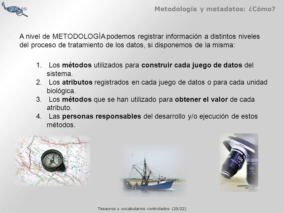Tesauros y vocabularios controlados (20/22) Metodología y metadatos: ¿Cómo.