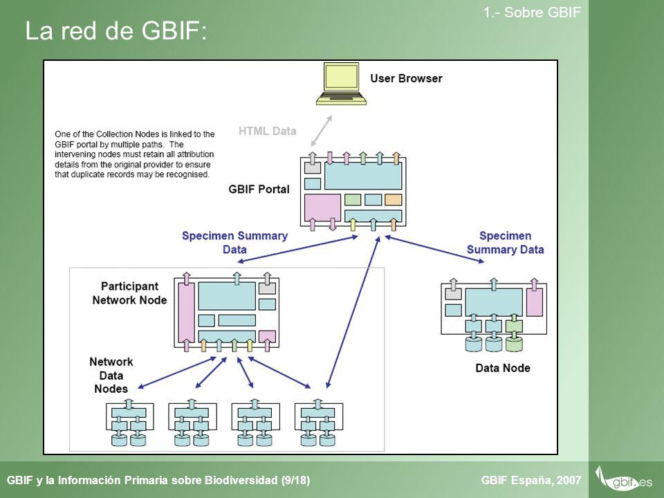 Taller de Herbar GBIF España, 2007GBIF y la Información Primaria sobre Biodiversidad (9/18) 1.- Sobre GBIF La red de GBIF: