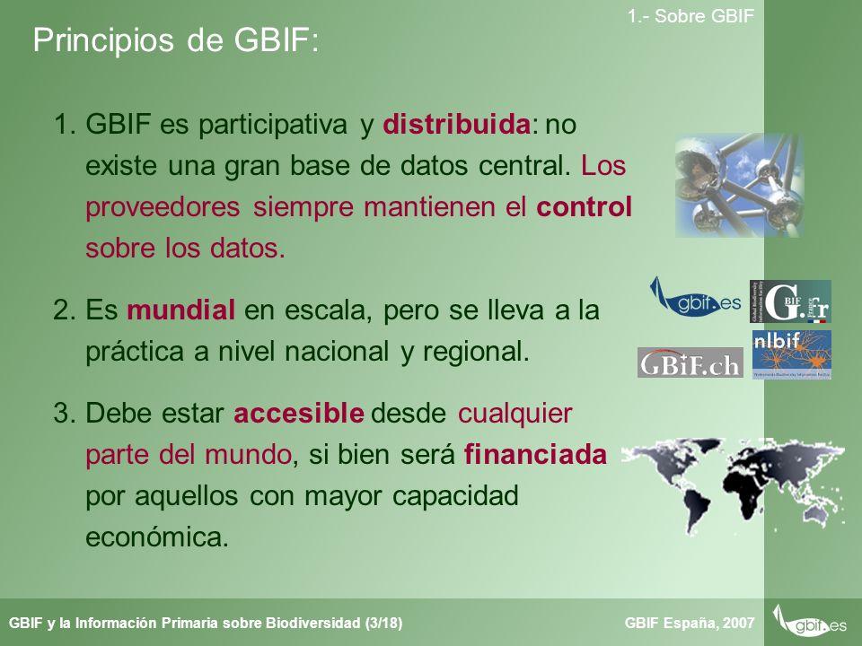 Taller de Herbar GBIF España, 2007GBIF y la Información Primaria sobre Biodiversidad (3/18) 1.- Sobre GBIF Principios de GBIF: 1.GBIF es participativa y distribuida: no existe una gran base de datos central.
