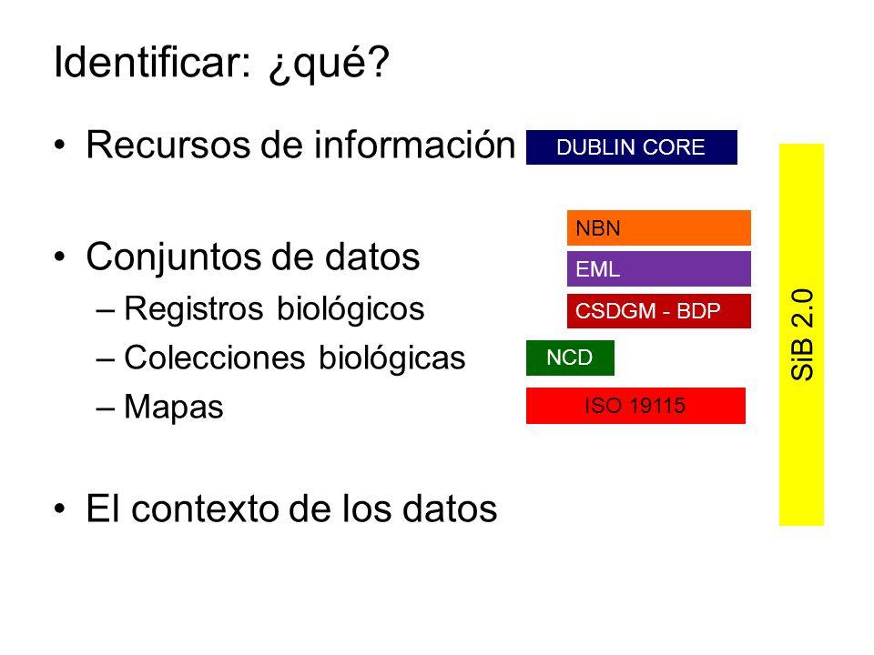 Recursos de información Conjuntos de datos –Registros biológicos –Colecciones biológicas –Mapas El contexto de los datos DUBLIN CORE SiB 2.0 CSDGM - B