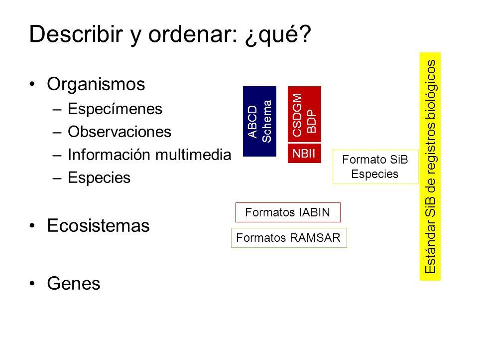 Organismos –Especímenes –Observaciones –Información multimedia –Especies Ecosistemas Genes ABCD Schema Estándar SiB de registros biológicos CSDGM BDP
