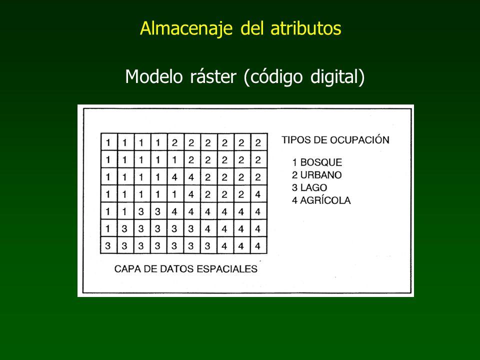 Almacenaje del atributos Modelo ráster (código digital)