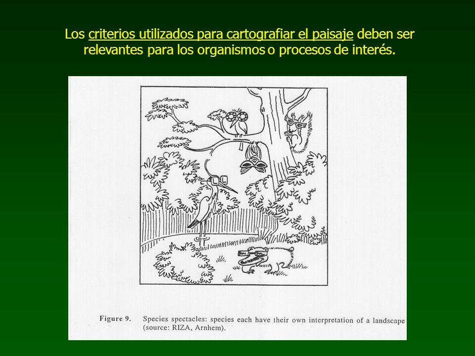 Los criterios utilizados para cartografiar el paisaje deben ser relevantes para los organismos o procesos de interés.
