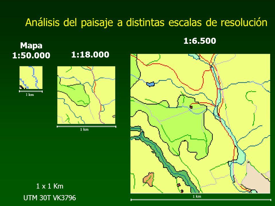 1 km Mapa 1:50.000 1 km 1:18.000 1 km 1:6.500 1 x 1 Km UTM 30T VK3796 Análisis del paisaje a distintas escalas de resolución