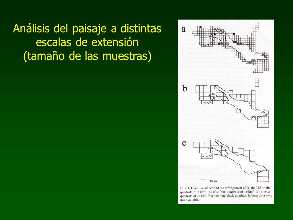 Análisis del paisaje a distintas escalas de extensión (tamaño de las muestras)