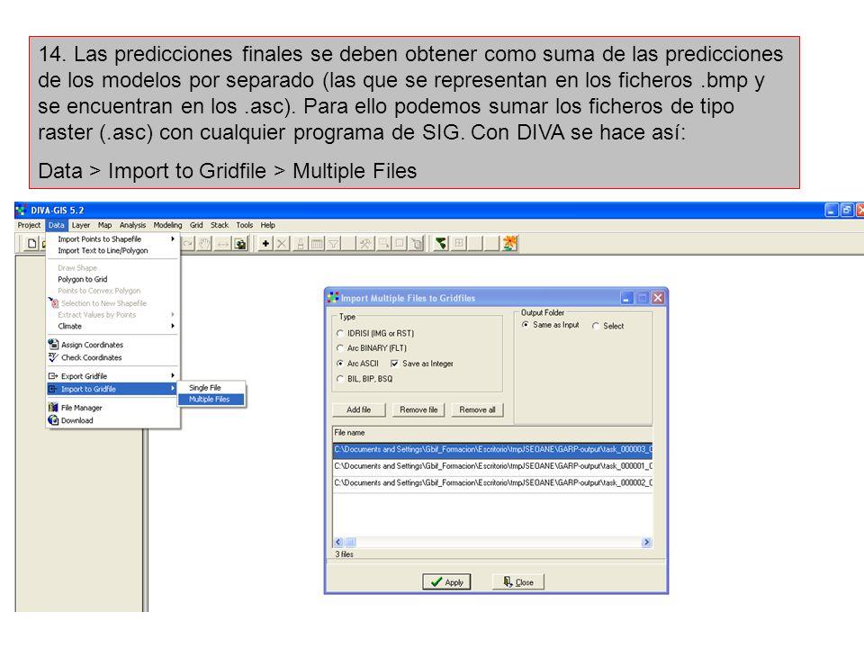 14. Las predicciones finales se deben obtener como suma de las predicciones de los modelos por separado (las que se representan en los ficheros.bmp y