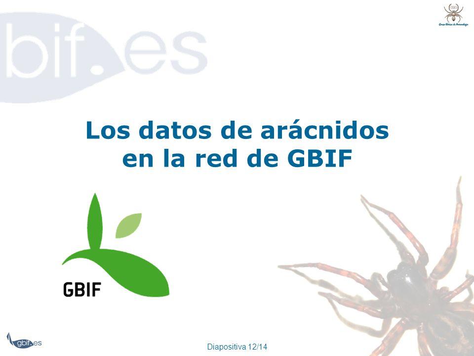 Diapositiva 12/14 Los datos de arácnidos en la red de GBIF