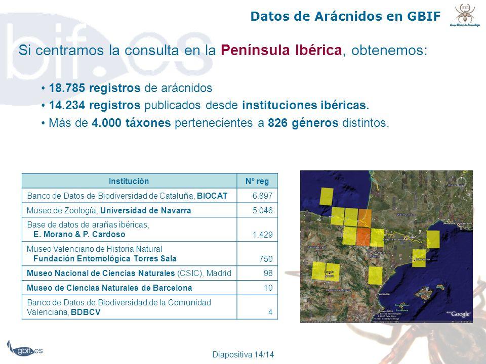 Diapositiva 14/14 Datos de Arácnidos en GBIF Si centramos la consulta en la Península Ibérica, obtenemos: 18.785 registros de arácnidos 14.234 registr