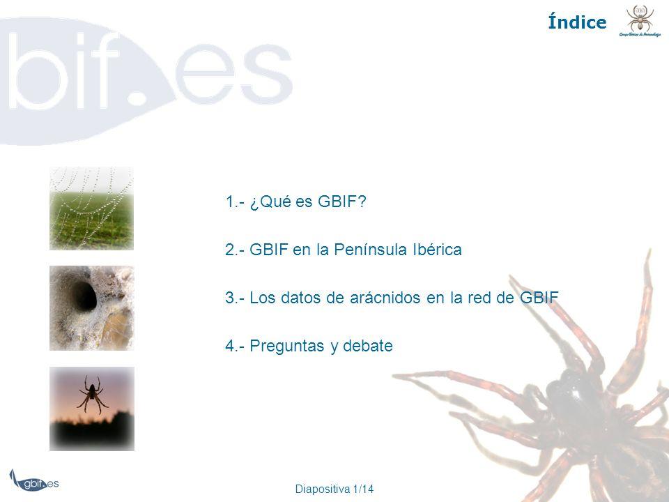 Diapositiva 1/14 Índice 1.- ¿Qué es GBIF? 2.- GBIF en la Península Ibérica 3.- Los datos de arácnidos en la red de GBIF 4.- Preguntas y debate