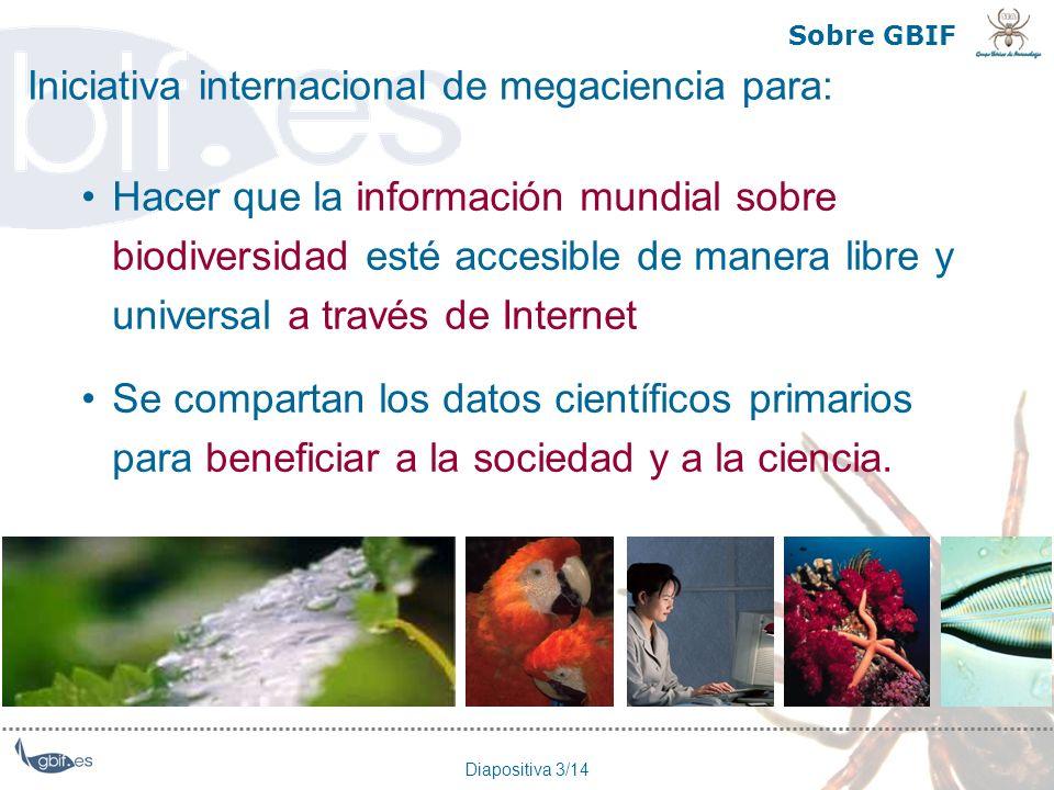 Diapositiva 3/14 Sobre GBIF Hacer que la información mundial sobre biodiversidad esté accesible de manera libre y universal a través de Internet Se co