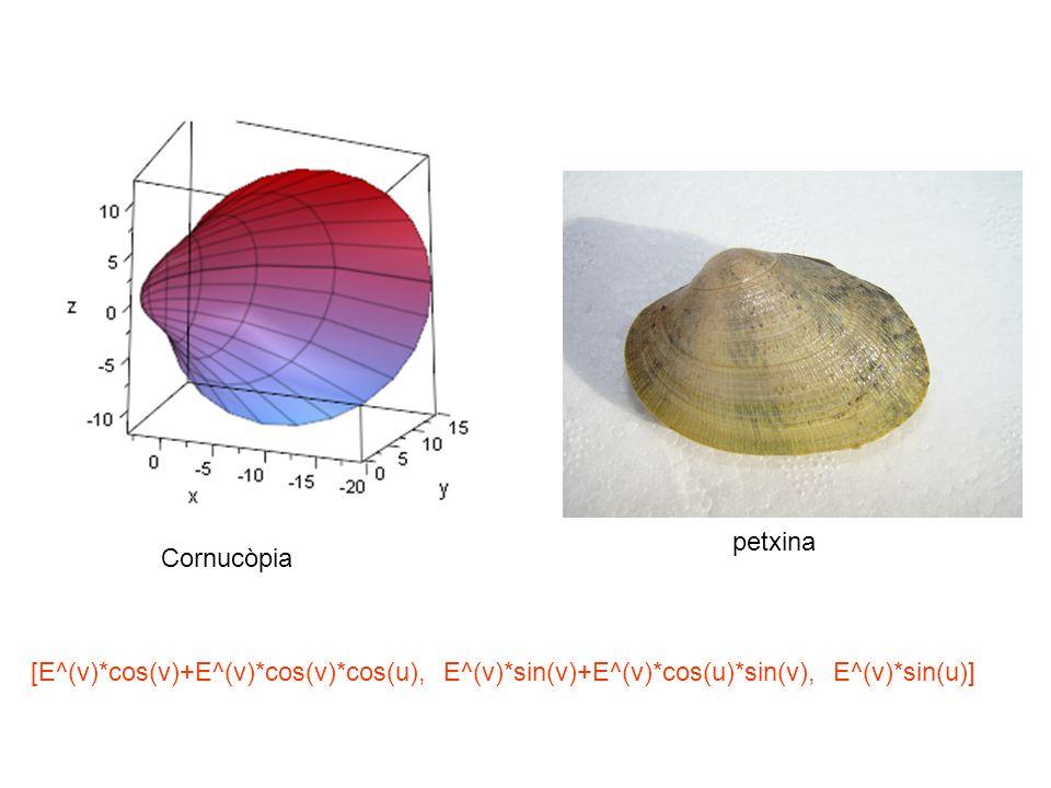 [E^(v)*cos(v)+E^(v)*cos(v)*cos(u), E^(v)*sin(v)+E^(v)*cos(u)*sin(v), E^(v)*sin(u)] Cornucòpia petxina