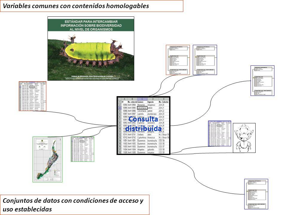 Variables comunes con contenidos homologables Consulta distribuida Conjuntos de datos con condiciones de acceso y uso establecidas