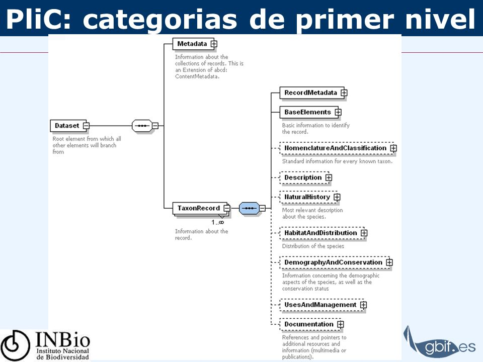 PliC: categorias de primer nivel