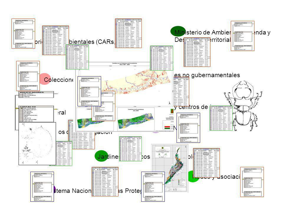 UAESPNN Autoridades ambientales (CARs, DAMAs) Ministerio de Ambiente, Vivienda y Desarrollo Territorial Público general Sistema Nacional de Áreas Protegidas Jardines botánicos y parques zoológicos Organizaciones no gubernamentales Institutos de investigación Universidades y centros de investigación Colecciones biológicas Redes y asociaciones