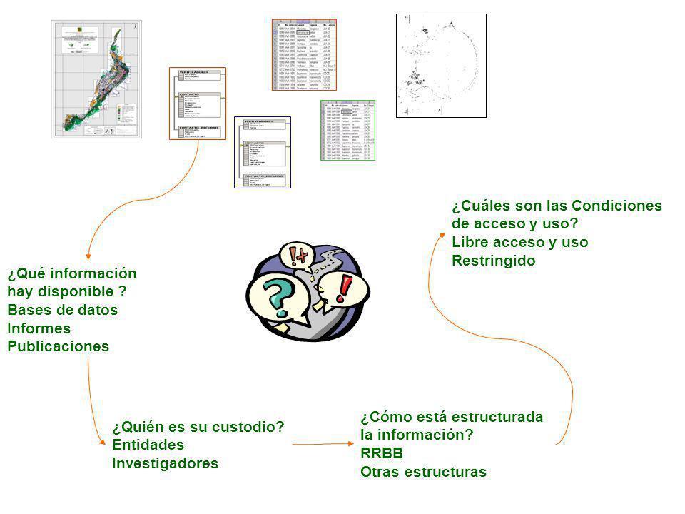 ¿Cómo está estructurada la información. RRBB Otras estructuras ¿Qué información hay disponible .