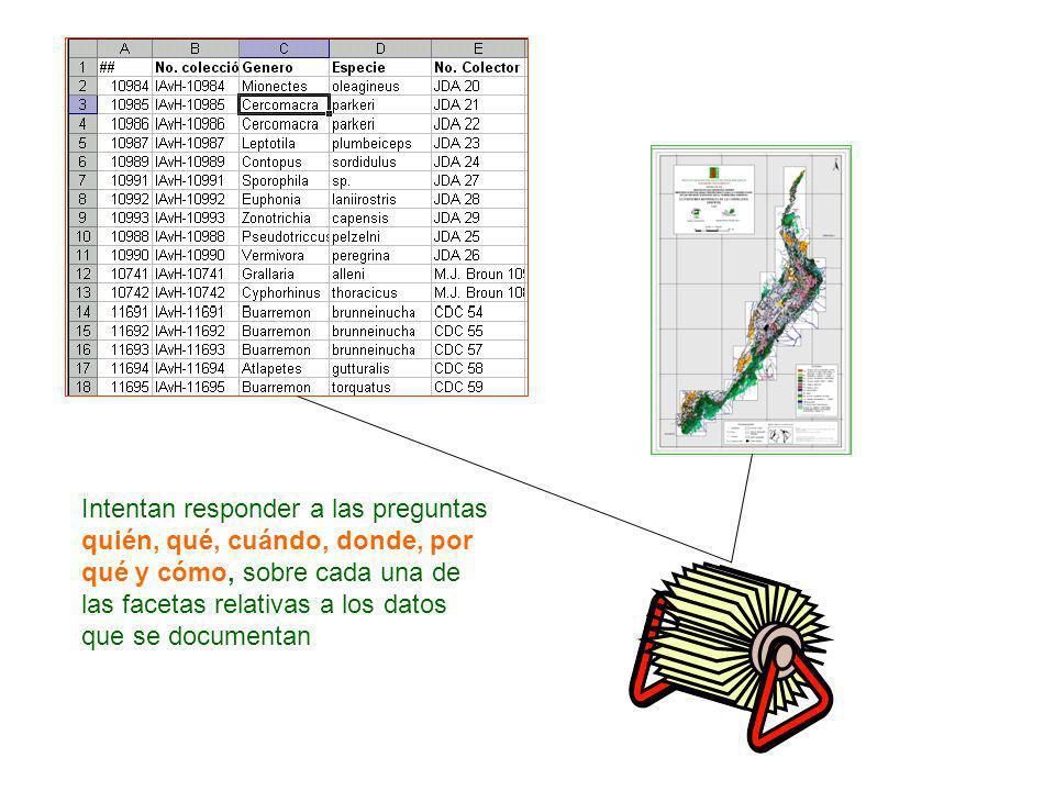 HD CD M M M M CM E Facilitan la gestión de conjuntos de datos distribuidos