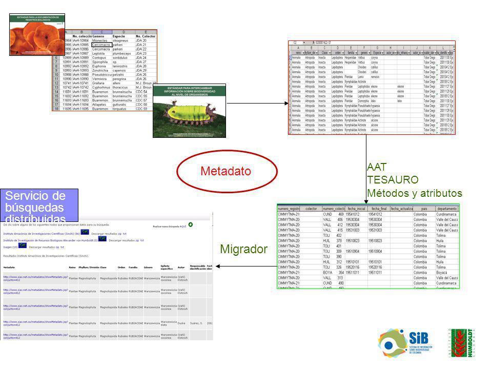 AAT TESAURO Métodos y atributos Migrador Metadato Servicio de búsquedas distribuidas