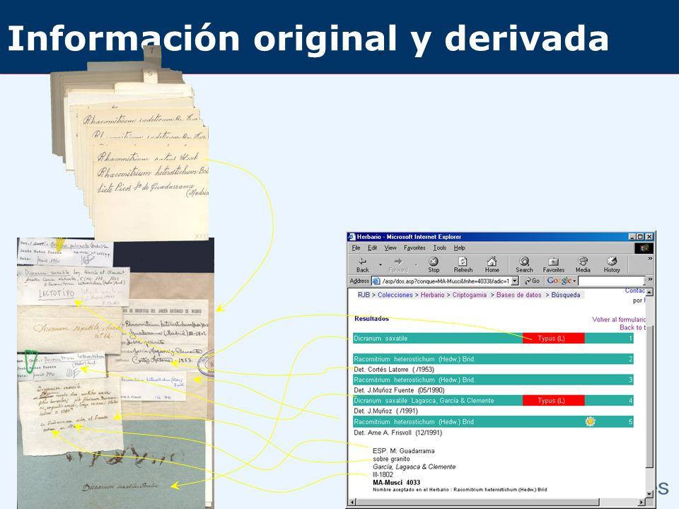 Información original y derivada