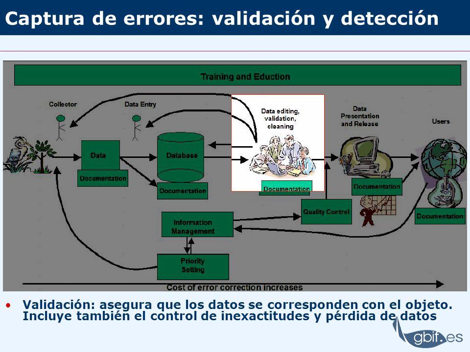Procedimiento Establecer procedimientos que no conlleven pérdida de datos Las reglas de normalización deben cubrir todos los casos Los procedimientos no deben bloquear el progreso del trabajo ante casos no contemplados o dudas