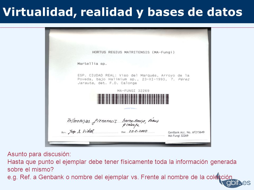 Virtualidad, realidad y bases de datos Asunto para discusión: Hasta que punto el ejemplar debe tener físicamente toda la información generada sobre el