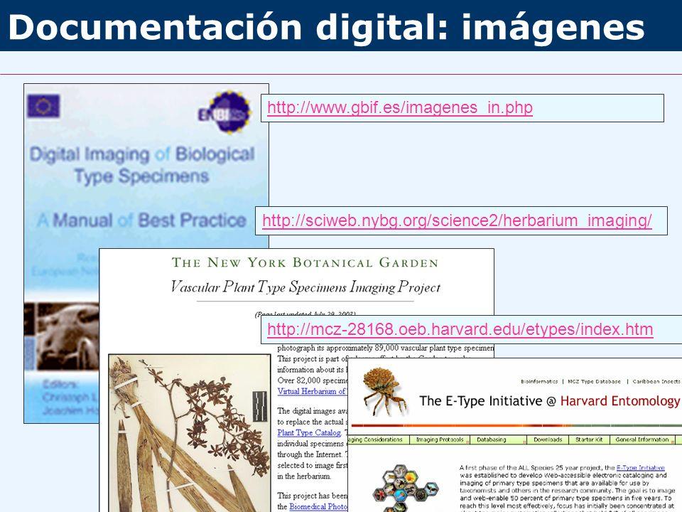 Documentación digital: imágenes http://www.gbif.es/imagenes_in.php http://sciweb.nybg.org/science2/herbarium_imaging/ http://mcz-28168.oeb.harvard.edu