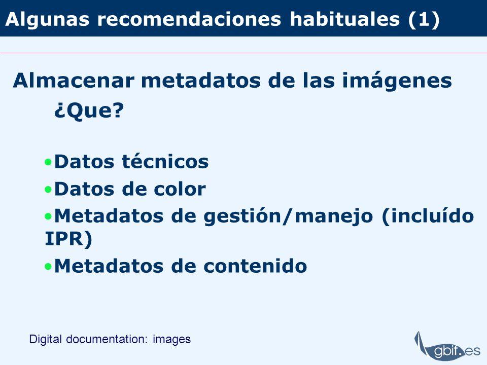 Algunas recomendaciones habituales (1) Almacenar metadatos de las imágenes ¿Que? Datos técnicos Datos de color Metadatos de gestión/manejo (incluído I