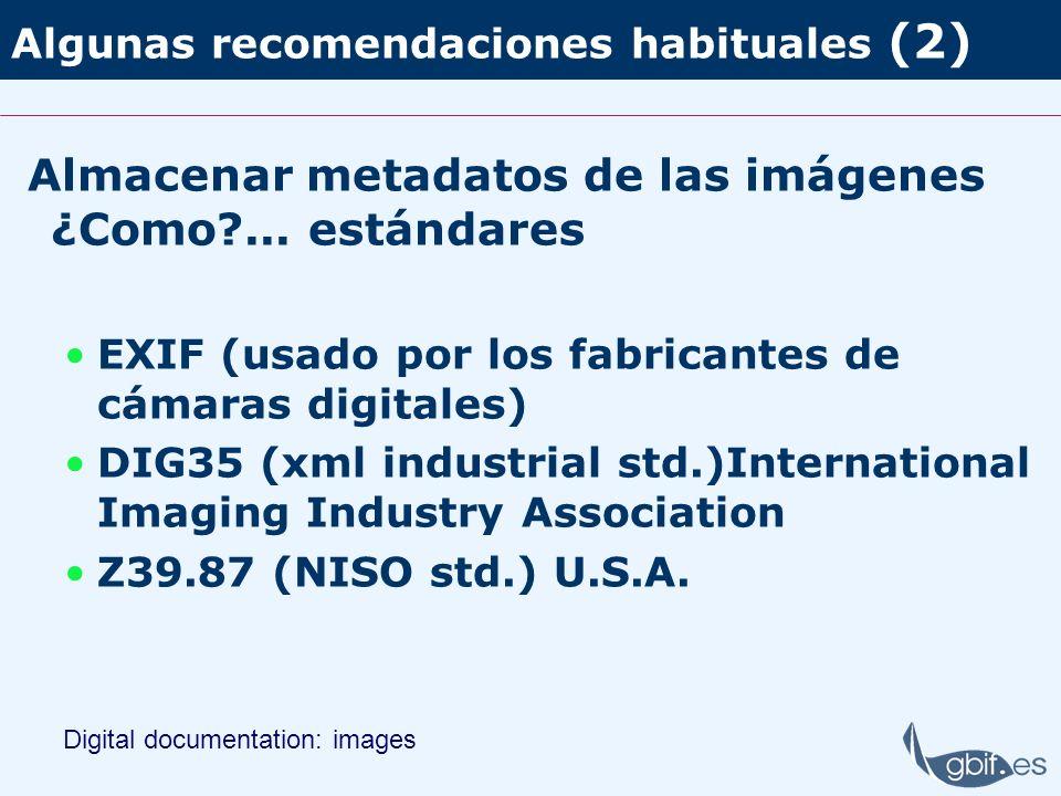 Algunas recomendaciones habituales (2) Almacenar metadatos de las imágenes ¿Como?... estándares EXIF (usado por los fabricantes de cámaras digitales)