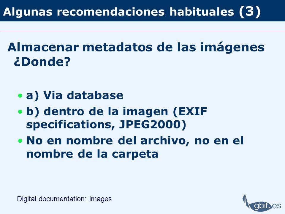 Algunas recomendaciones habituales (3) Almacenar metadatos de las imágenes ¿Donde? a) Via database b) dentro de la imagen (EXIF specifications, JPEG20