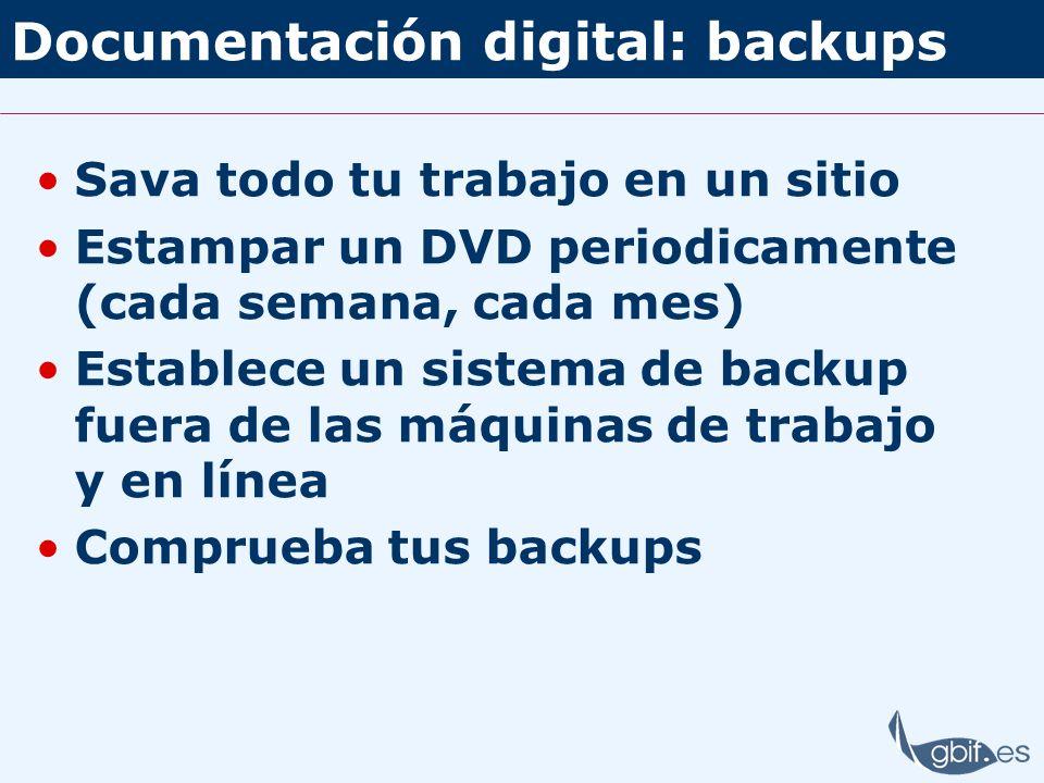 Documentación digital: backups Sava todo tu trabajo en un sitio Estampar un DVD periodicamente (cada semana, cada mes) Establece un sistema de backup
