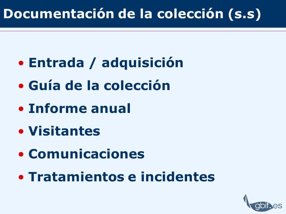 Documentación de la colección (s.s) Entrada / adquisición Guía de la colección Informe anual Visitantes Comunicaciones Tratamientos e incidentes