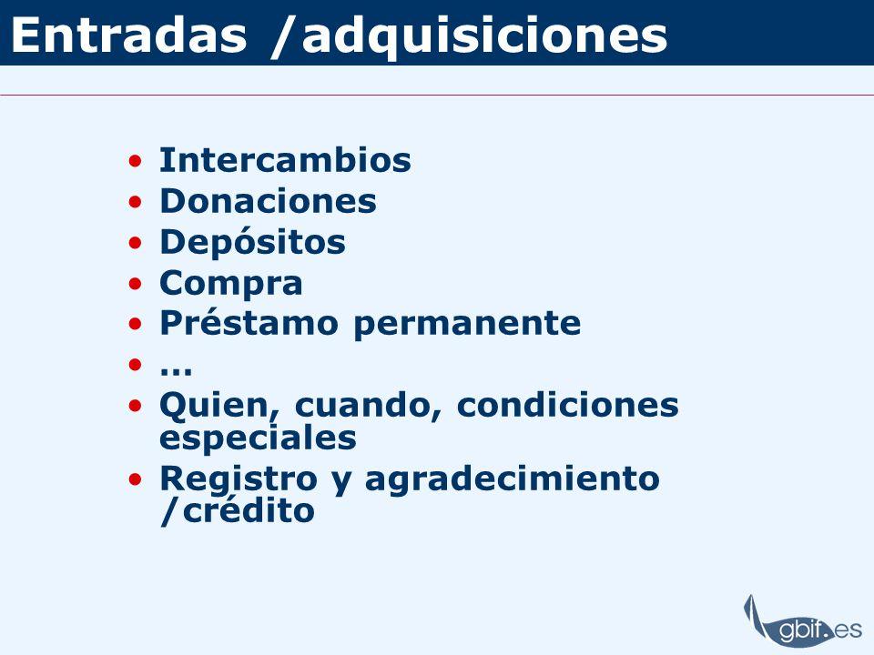Entradas /adquisiciones Intercambios Donaciones Depósitos Compra Préstamo permanente … Quien, cuando, condiciones especiales Registro y agradecimiento