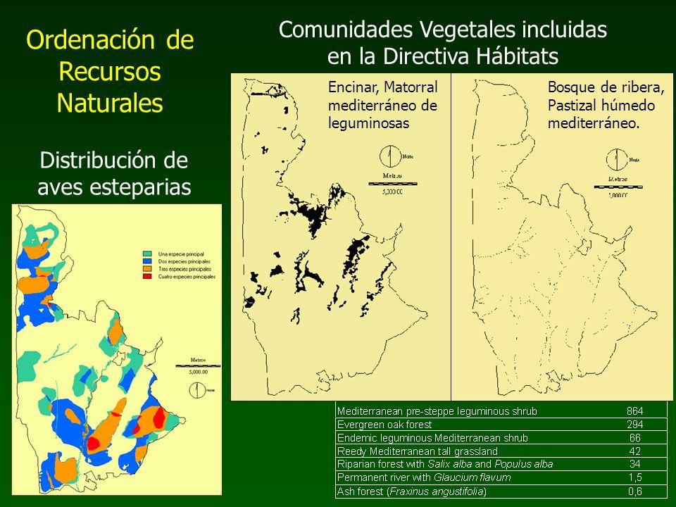 Comunidades Vegetales incluidas en la Directiva Hábitats Distribución de aves esteparias Bosque de ribera, Pastizal húmedo mediterráneo. Encinar, Mato
