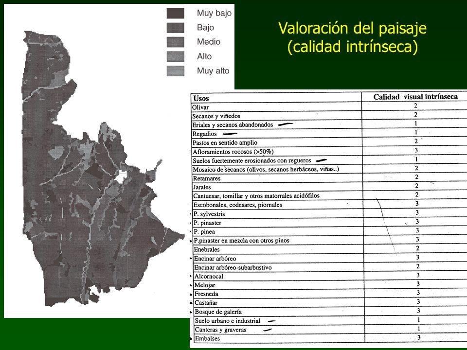 Valoración del paisaje (calidad intrínseca)