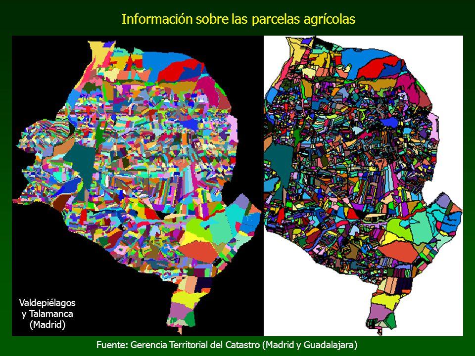 Fuente: Gerencia Territorial del Catastro (Madrid y Guadalajara) Información sobre las parcelas agrícolas Valdepiélagos y Talamanca (Madrid)