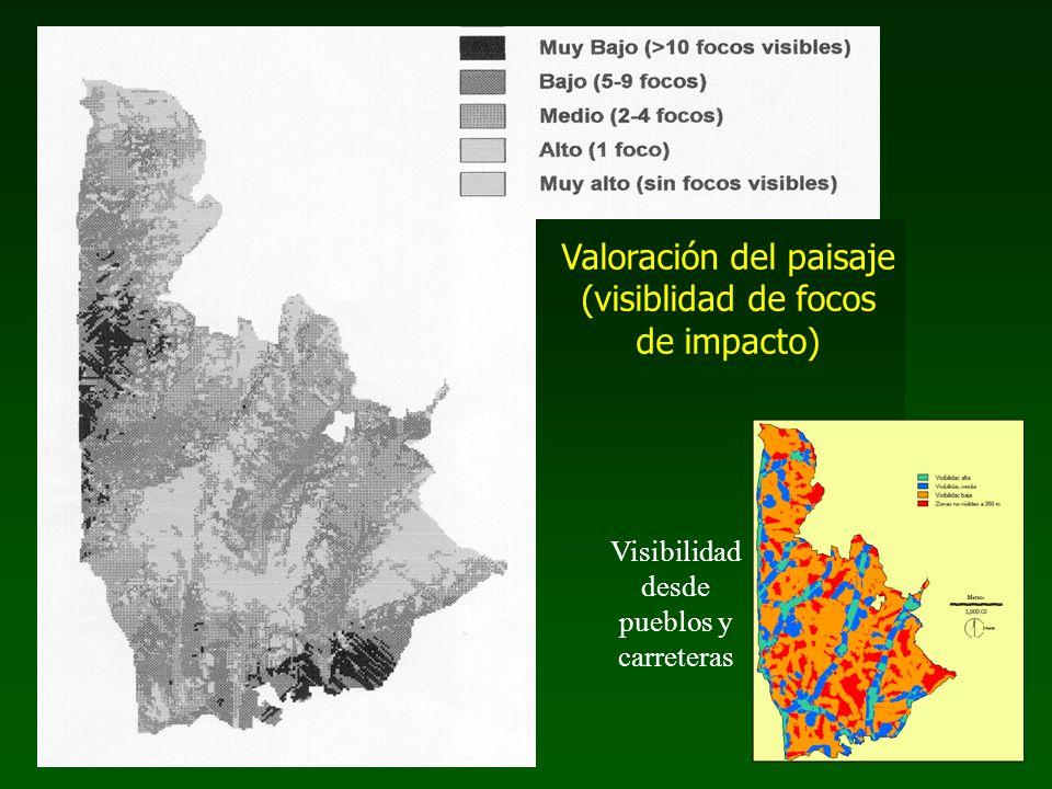 Valoración del paisaje (visiblidad de focos de impacto) Visibilidad desde pueblos y carreteras