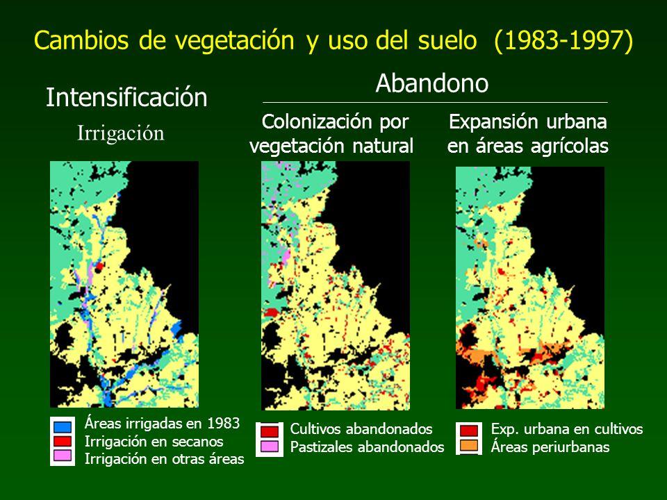 Áreas irrigadas en 1983 Irrigación en secanos Irrigación en otras áreas Cultivos abandonados Pastizales abandonados Exp. urbana en cultivos Áreas peri
