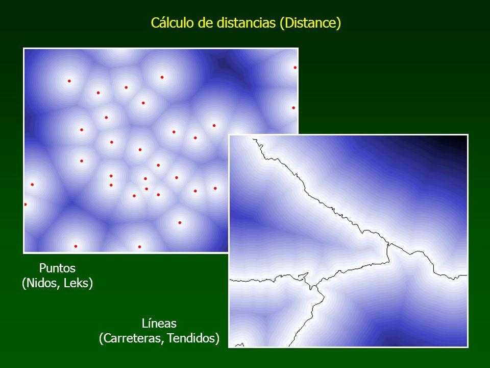 Cálculo de distancias (Distance) Puntos (Nidos, Leks) Líneas (Carreteras, Tendidos)