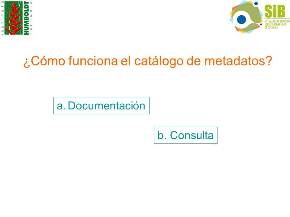 ¿Cómo funciona el catálogo de metadatos? a.Documentación b. Consulta