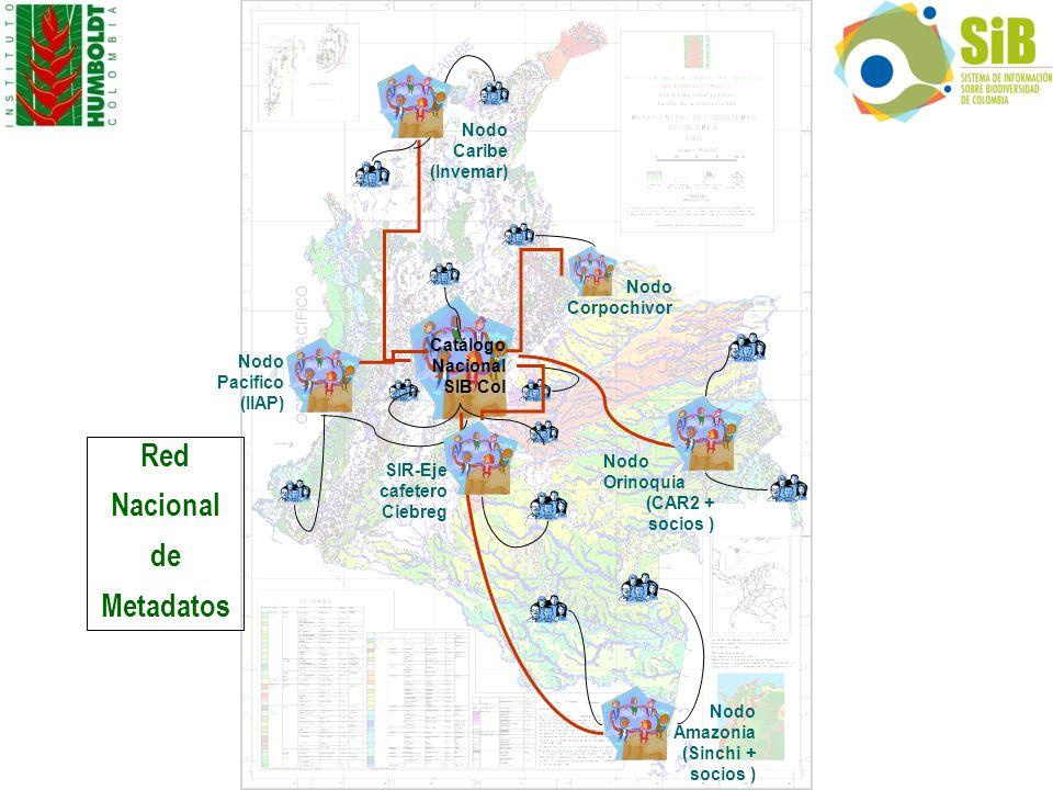 Nodo Pacifico (IIAP) Nodo Caribe (Invemar) Nodo Amazonia (Sinchi + socios ) Catálogo Nacional SIB Col Nodo Orinoquia (CAR2 + socios ) Nodo Corpochivor