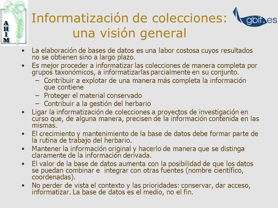 Informatización de colecciones: una visión general La elaboración de bases de datos es una labor costosa cuyos resultados no se obtienen sino a largo plazo.