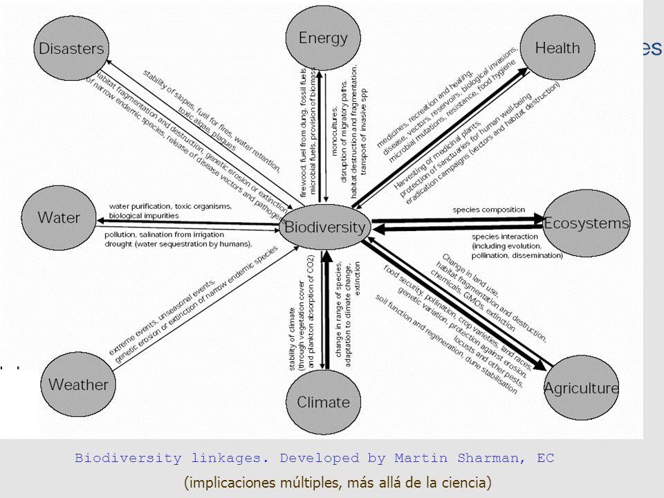 Niveles de la biodiversidad Información sobre especies (de qué estamos hablando, relevancia) El acceso a los datos de sobre biodiversidad es complicado –Múltiples implicaciones –La dispersión de la información sobre biodiversidad –Taxonomía, nomenclatura y heterogeneidad –Énfasis en la publicación de resultados Recursos en línea GBIF –Propósito, –Historia –Implementación Consideraciones para después Sumario