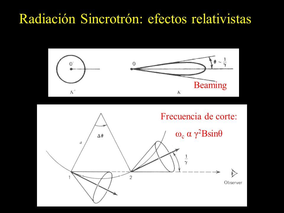 Radiación Sincrotrón: efectos relativistas Frecuencia de corte: ω c α γ 2 Bsinθ Beaming